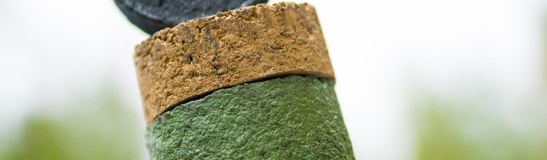 Feiring utvikler farget asfalt